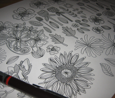 Rpencil_flowers_st_sf_basic_22122015_comment_655339_thumb
