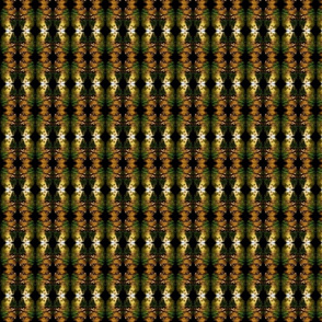 Forest Kaleidoschope