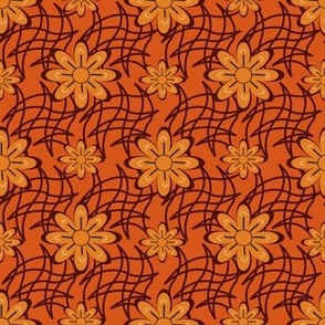 Orange Flower on a Web