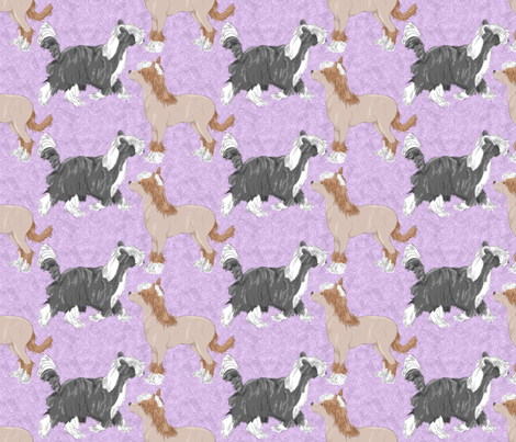Chinese crested puppies - purple fabric by rusticcorgi on Spoonflower - custom fabric