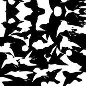 Rrbwbirds_shop_thumb