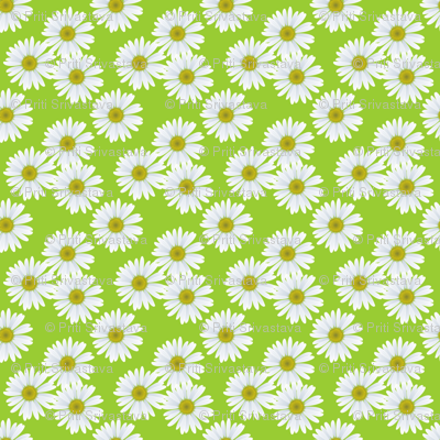 daisy_pattern