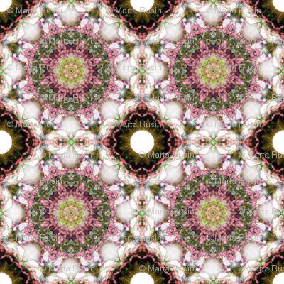 kaleidoscopic hydrengae