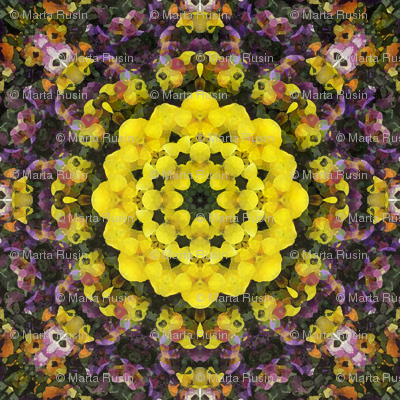 kaleidoscopic violets