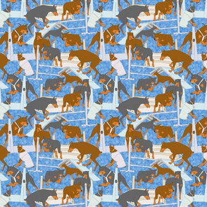 Versatile Dobermans - blue