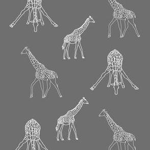 Giraffe Poses