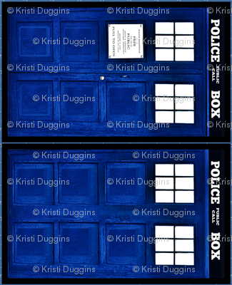 police box doors (front and back panels)