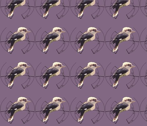 Kookaburra_-_decal_shop_preview