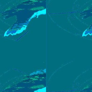Kookaburra - Decal