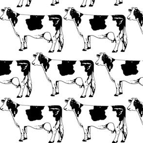 Moo Cow Boogie