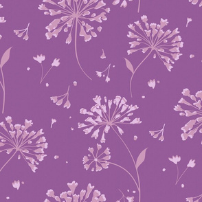 Lily of the Nile purple