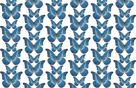 Blue Morpho Butterfly fabric by angelaanderson on Spoonflower - custom fabric