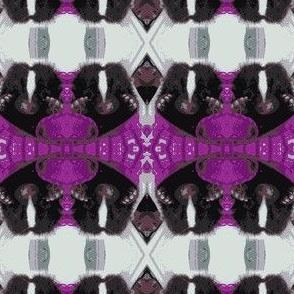sweet skunk baby
