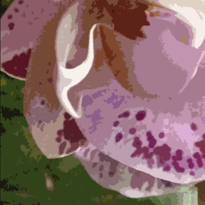 Huge Orchids for Blue Lady, sideways layout