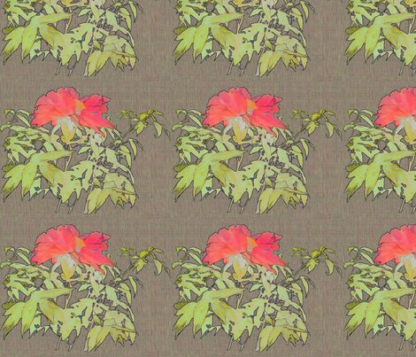 Peony-coral-fibers2_shop_preview