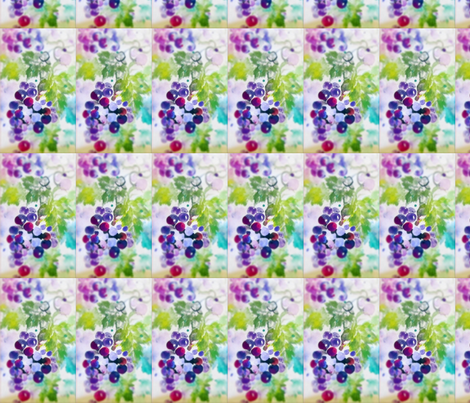 Grapes_Reg_Soft-ed fabric by tree_of_life on Spoonflower - custom fabric