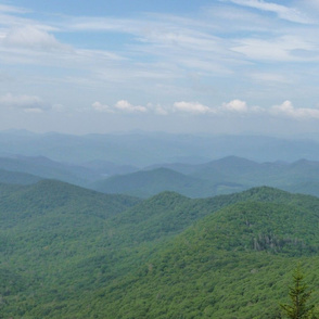 Blue Ridge Mountains with Tree