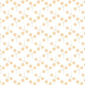 orange berries on white