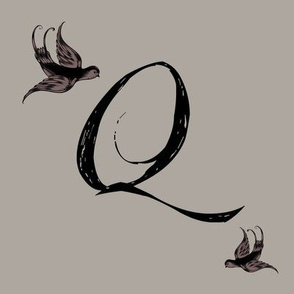 Q is for Quinn