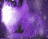 Persian-cat-11__1__thumb