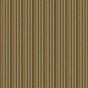 Armadillo Stripe