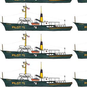 pilotD