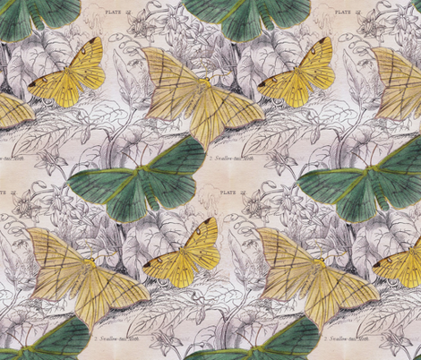 Moth Ridden Botanical  fabric by peacoquettedesigns on Spoonflower - custom fabric