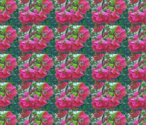 Rcrabapple_blossoms_paint_shop_preview
