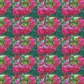 Rcrabapple_blossoms_paint_shop_thumb