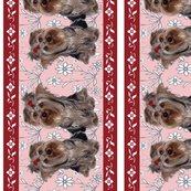 Rbegin_yorkie_border_shop_thumb