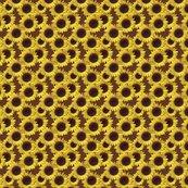 Rrr1482408_rseamless_sunflowers_shop_thumb