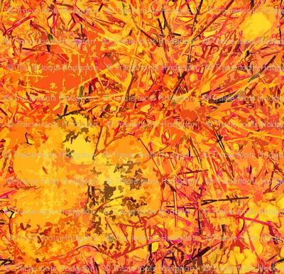 Fungi Kaleidoscope - Solar