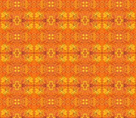 Fungi Kaleidoscope - Solar fabric by tequila_diamonds on Spoonflower - custom fabric