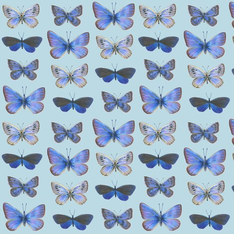 R0_butterflies3b_rows-bcdae4_shop_preview