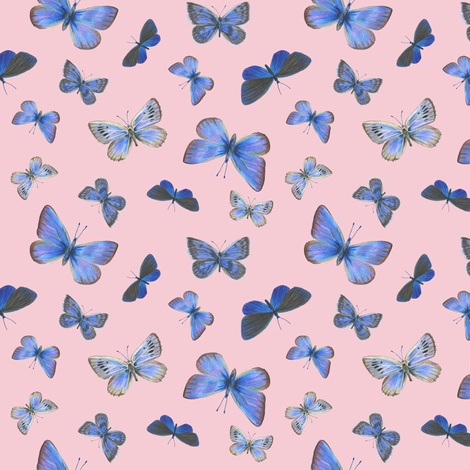 small blues on the air, sunrise pink fabric by weavingmajor on Spoonflower - custom fabric