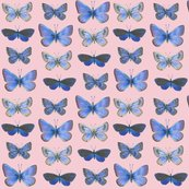 R0_butterflies3b_rows-f5ccd3_shop_thumb