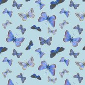 R0_butterflies3b_toss-bcdae4_shop_thumb