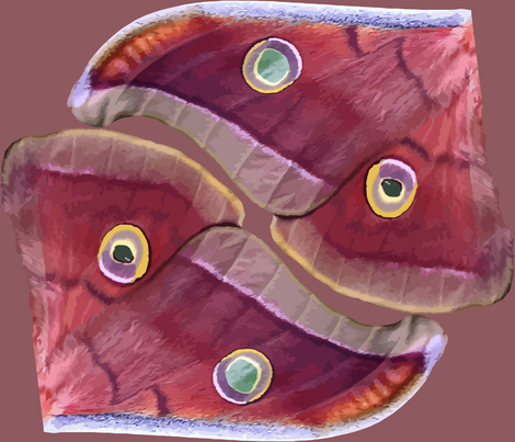 Polyphemus Moth Wings fabric by bonnie_phantasm on Spoonflower - custom fabric