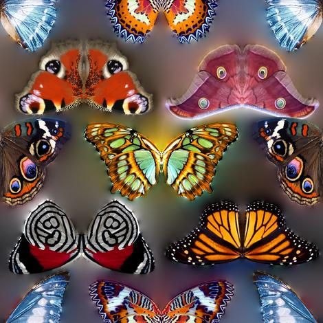 Butterflies Invasion fabric by bonnie_phantasm on Spoonflower - custom fabric