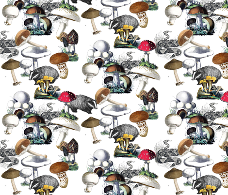 Badger Badger Mushroom fabric by poshcrustycouture on Spoonflower - custom fabric