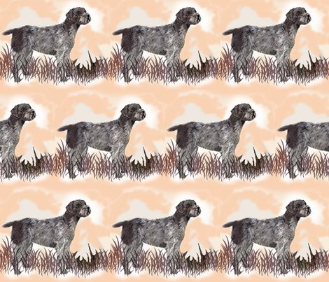 R1487665_1487665_rgerman_wirehair_with_quail2_shop_preview