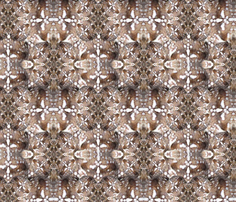 Arachnoscope fabric by the_fretful_porpentine on Spoonflower - custom fabric