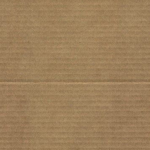 plain brown wrapper (faux cardboard)