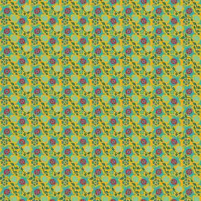 turtle2-01