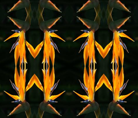 Birds of Paradise fabric by debptz on Spoonflower - custom fabric
