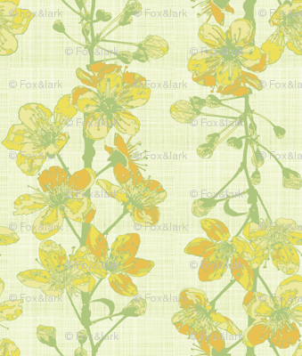 cherry sprigs - honey yellow