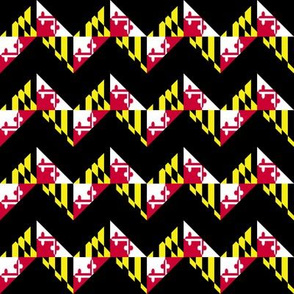 My Maryland in Chevron