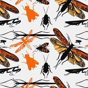 orange_texture_bugs