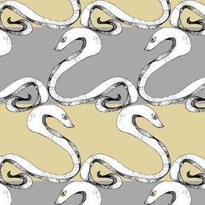 Snake Stripes