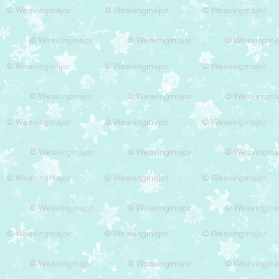 photographic snowflakes on pale ice blue